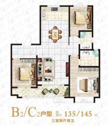 东方·信华城B2/C2户型