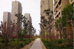 城建清華園