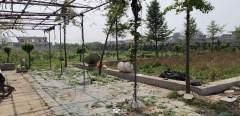 农家乐农场+土地 出租或合作