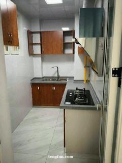 金河灣兩室兩廳一衛精裝修出租