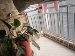 (市中心)九州清晏2室2厅1卫90.4m2简单装修