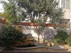 善南花园别墅5室3厅2卫320m²毛坯房