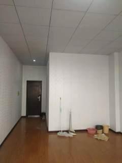 (市中心)新兴步行街1室1厅1卫50m²豪华装修
