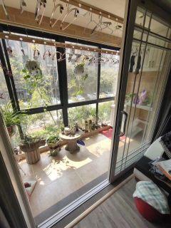 滨江三期花园洋房,豪华装修,房产证2年,可贷款