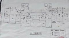 东方信华城(程堂回迁房)137平米,450号选房!限全款交易