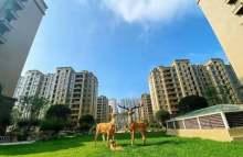 (城北)城建善国盛景一期+最后一套可贷款的房子+全款有优惠