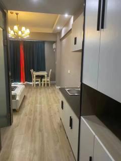 (城北)尚德家园1室1厅1卫1500元/月50m²豪华装修出租